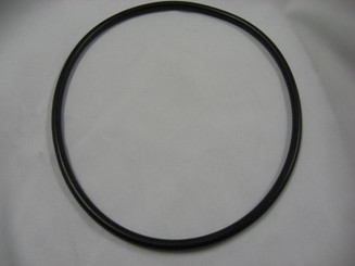 Pentair Quick-connect O-ring (35-4571)