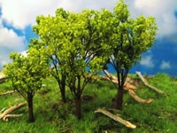 295-T19 Grand Central Gems Medium Oak Trees (6)