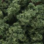 FC183 Woodland Scenics Medium Green Clump-Foliage (Large Bag)