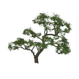 """94429 N Scale JTT Scenery 1 1/2"""" Tall Beech Tree 4/pk"""