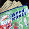 WEED MONEY COIN PURSE - Just kidding, this is for school books!