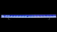 ADJ ECO Bar UV High Output LED Black Light w/ DMX