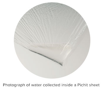 Photograph of water collected inside a Pichit sheet