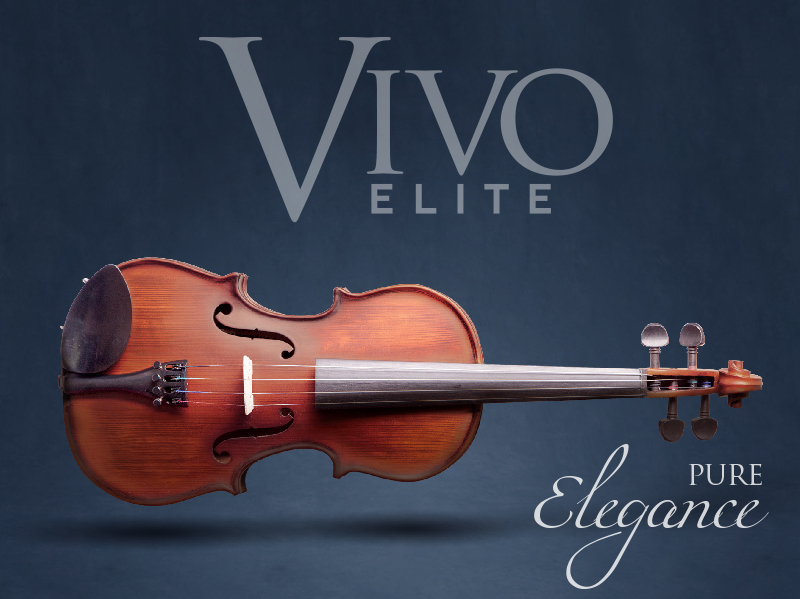 new-vivo-elite-promo-header-web-image.jpg