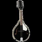 Tanglewood TWMTBKP Union Series Mandolin Black