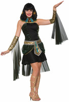 http://d3d71ba2asa5oz.cloudfront.net/12020345/images/fr77076%20women%27s%20fantasy%20cleopatra%20costume%20fancy%20dress.jpg