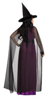 https://d3d71ba2asa5oz.cloudfront.net/12020345/images/fw124554%20women%27s%20midnight%20magic%20purple%20witch%20costume%20dress.jpg