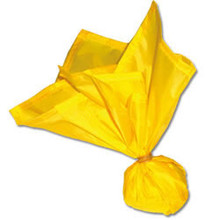 Officials Penalty Flag