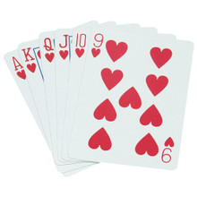 Standard Playing Cards - Pinochle