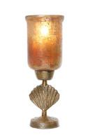 Fan Shell Huricane - SR063