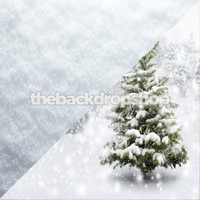 Snow Floor / Christmas Tree Backdrop - Items 2144 & 2147