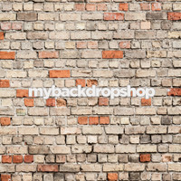 Rough Rustic Pink Brick Photography Backdrop - Item 3035