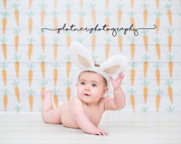 Watercolor Carrot Easter Photo Prop - Easter Bunny Wood Photo Drop - Item 3040