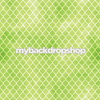 Lime Green and White Distressed Quatrefoil Tile Photography Backdrop - Item 3052