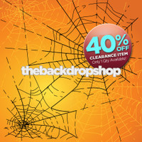 CLEARANCE - VINYL - 6ft x 6ft Halloween Backdrop - Spider Web Photo Background - Holiday Back Drop - Item 2142