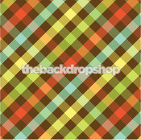 Rainbow Gingham Print Photography Backdrop - Item 117