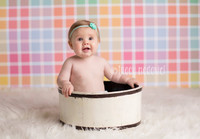 Pastel Plaid Photo Backdrop for Kids Pictures -  Back Drop for Photographers - Item 156