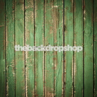 Green Barnwood Floor Mat or Photo Backdrop for Portraits - Rustic Flooring for Photoshoots - Item 629