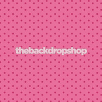 Cheapest Photo Background for Photographers - Newborn Girl Photography Backdrop Prop - Item 694