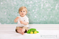 Sparkly Photography Backdrop - Seafoam Green Glitter Background for Travel Photography -  Back Drop - Item 776