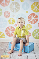 Colorful Background for Pictures  - Item 1022