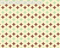 Newborn Photography Backdrop - Wallpaper Background for Photos - Mint Green and Brown  - Item 1149