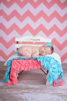 Pink Chevron Pattern Photography Backdrop - Item 1167