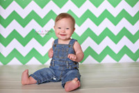 Chevron Zig Zag Photography Backdrop - Green & White Vinyl Photo Background - Item 1171