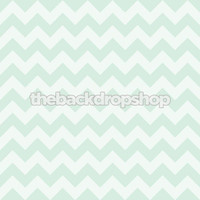 Pastel Green Photography Chevron Backdrop - Newborn Chevron Photo Background - Item 1179