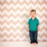 Tan and White Chevron Photography Backdrop - Chevron Pattern Photo Background for Studio Photography - Item 1210