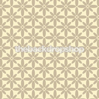 Neutral Backdrop for Photographers - Studio Photography Background - Item 1255