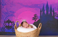 Cinderella Photography Backdrop - Fairy Tale Photo Prop Background - Item 1517
