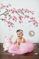 Cherry Blossom Branch Photography Backdrop - Tree Limb Photo Backdrop - Flowers - Item 1595
