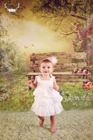 Fantasy Photography Backdrop - Park Bench in Woods Photo Backdrop - Item 1633
