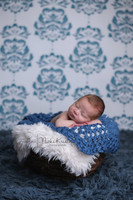 Blue Damask Photography Backdrop for Wedding Portraits - Indoor Photoshoot Prop -  Photo Background - Item 1710