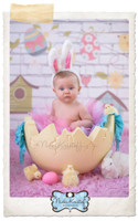 Easter Photography Backdrop - Birdhouses on String on White Brick Backdrop - Exclusive Design - Item 1829