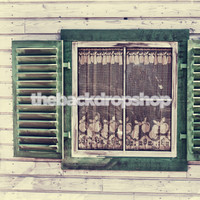 Green Window on Old House Photography Backdrop - Item 1868