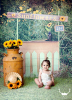 Sunflower Stand Photography Backdrop - Kid's Flower Stand Photo Backdrop - Item 2007