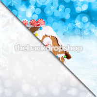 Snow and Snowflakes / Gingerbread House - Item 660 & 1762