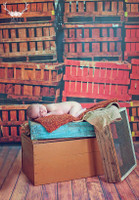 Stacked Wood Crates Photography Backdrop - Red and Brown Crates - Vinyl Photo Background - Item 1587
