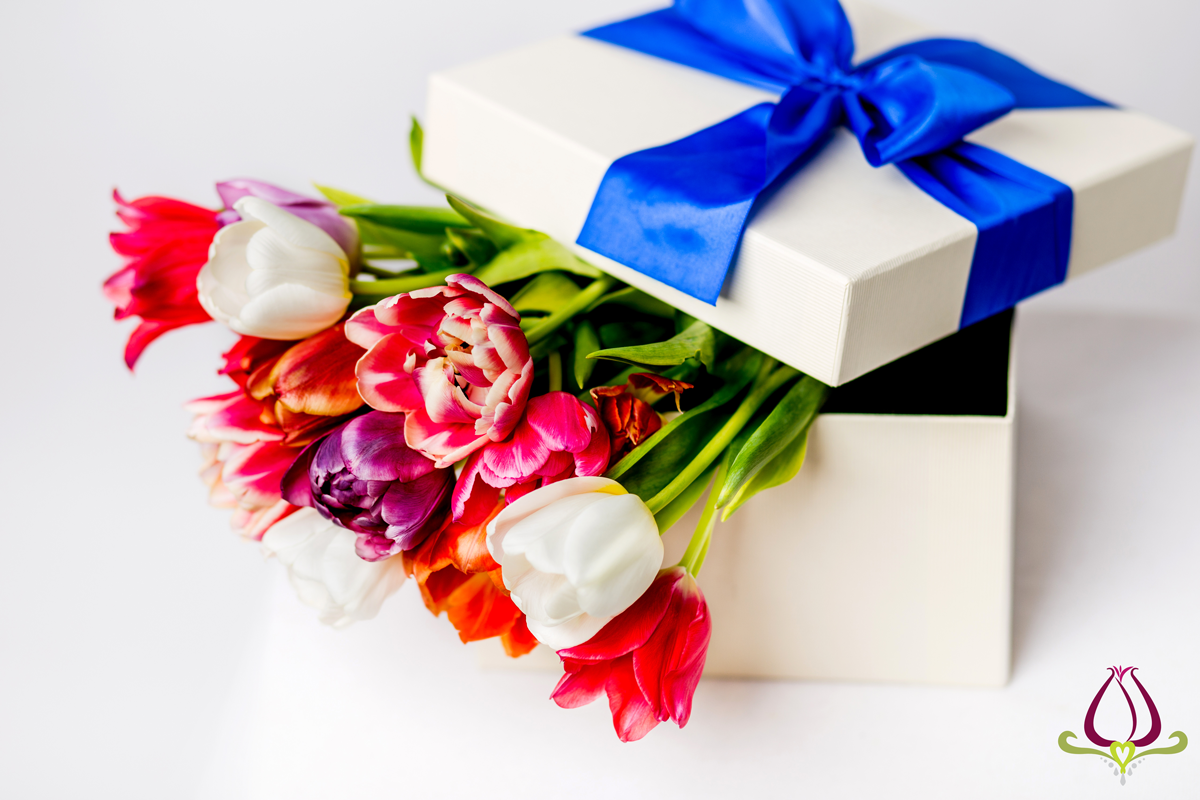 Your guide to easter gifts abbott florist your guide to easter gifts abbott florist negle Choice Image