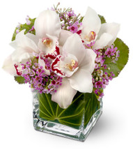 For a gift that's both luxurious and lovely, consider a bouquet of exotic fresh white orchids accented with tiny pink blossoms, arranged in a leaf-lined glass cube vase. It's a bit of the tropics, delivered with a smile!