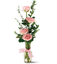 Send a bit of enchanting charm to a friend or loved one with this vase of joyful pink roses.