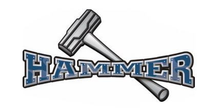 Hammer Premium Steel Arm System