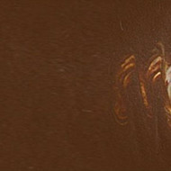 Matisse Fluid Acrylics - Raw Umber S1