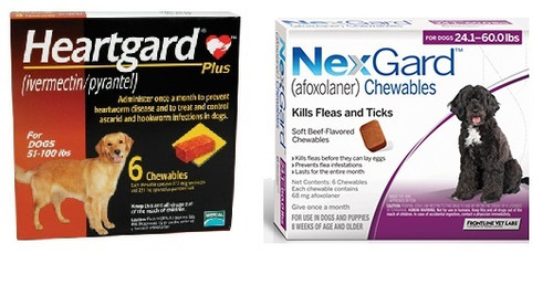 NexGard and Heartgard Combo for Dogs 50.1 - 60 lbs - 6 Pack