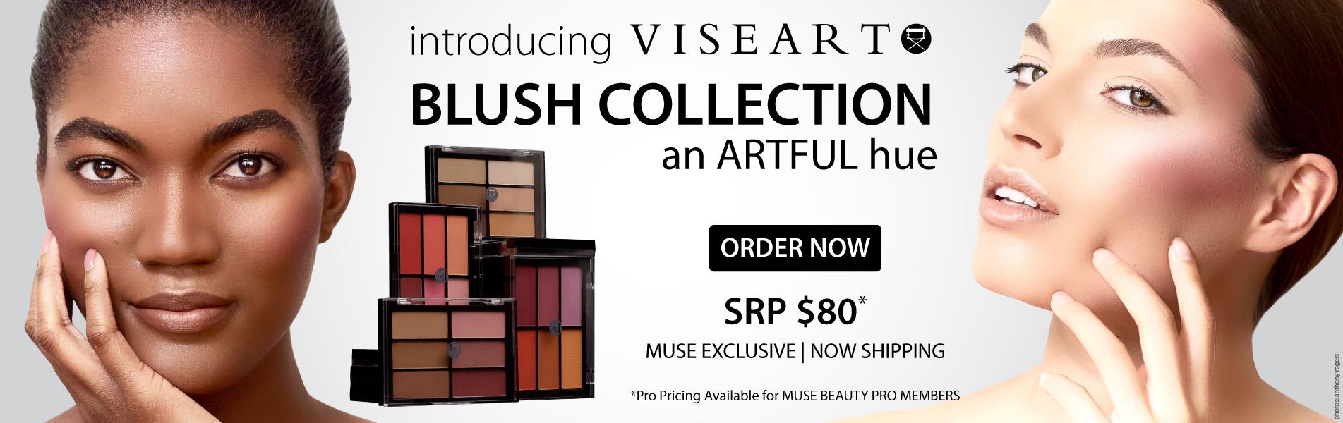 Viseart Blush Palette Collection