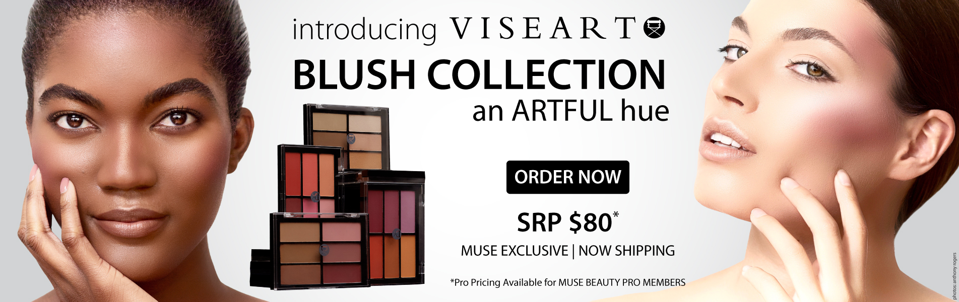 Viseart Blush Palette Collection