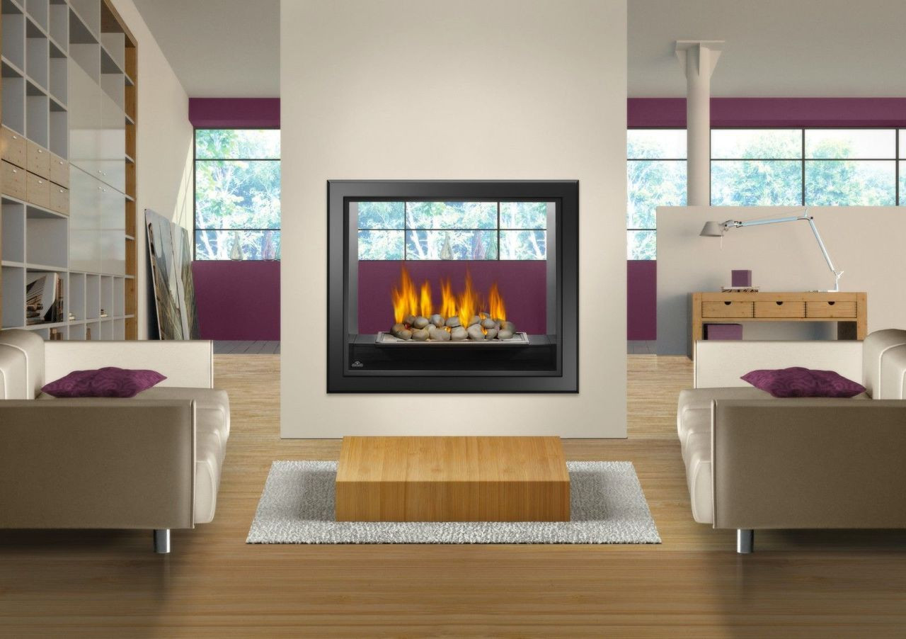 Napoleon hd 81 see thru gas fireplace for See thru fireplaces