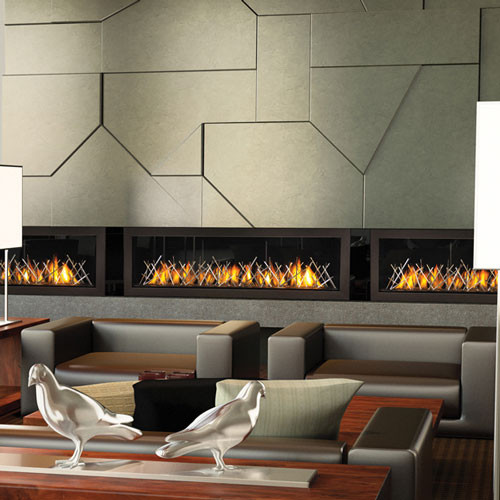 NAPOLEON VECTOR LHD45 GAS FIREPLACE